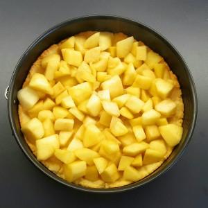 Apfel Streuselkuchen 7