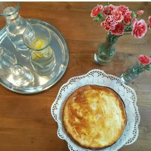 Käse-Mandarinen Kuchen (1)