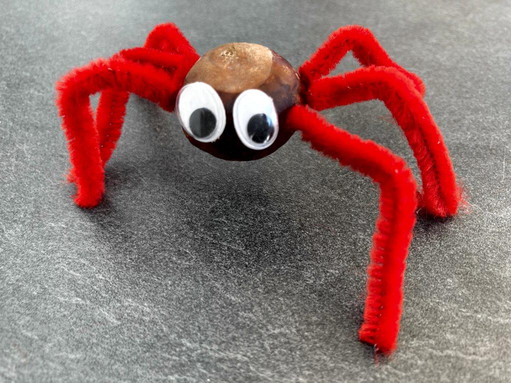 Spinne rot